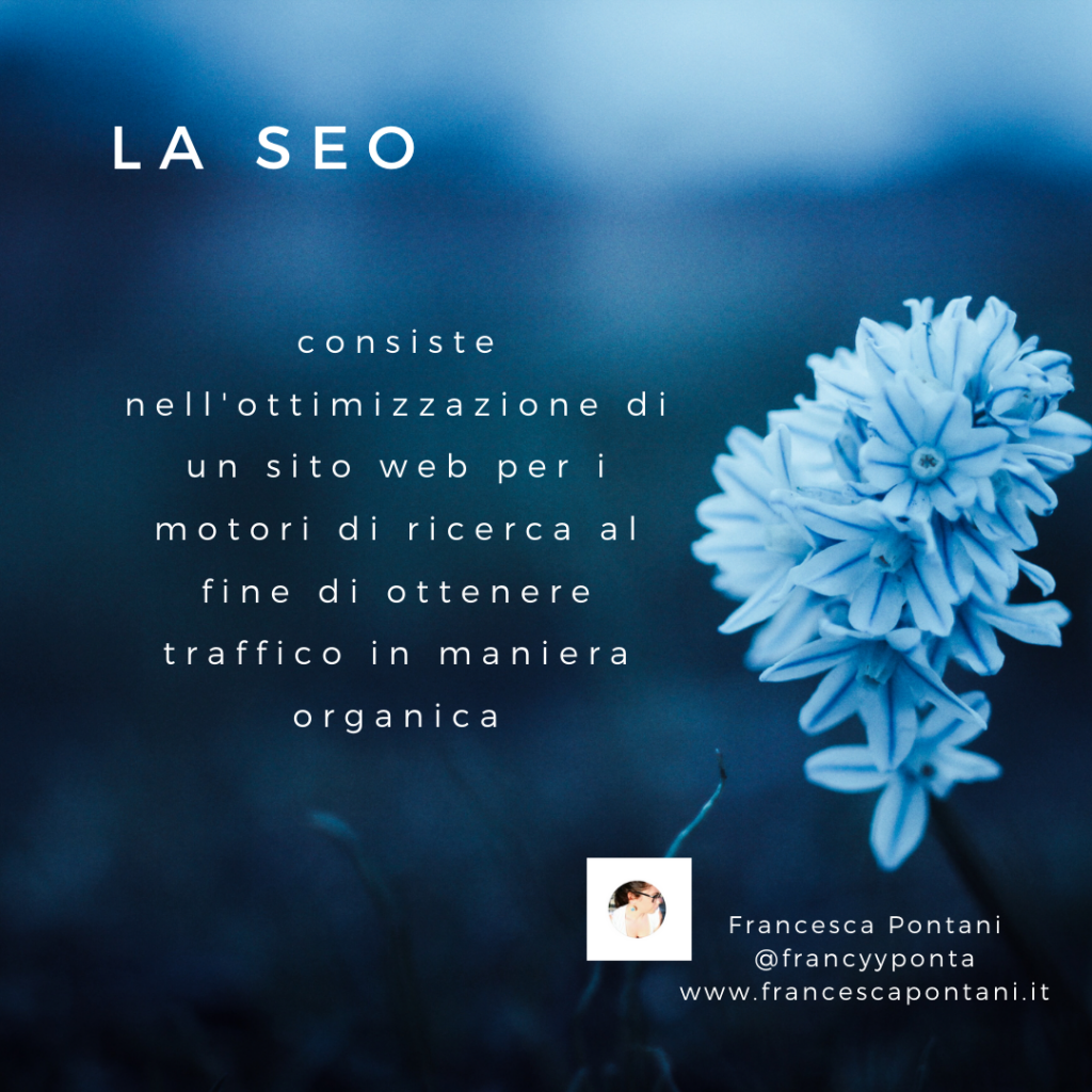 la SEO nel web marketing-Francesca Pontani Comunicazione-Viterbo